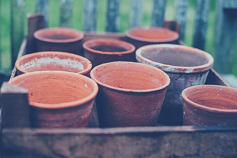 several terra cotta pots