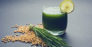 cup of wheatgrass juice