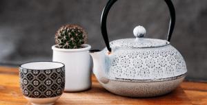 cast iron pot, succulent, and cup